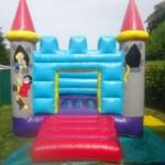 Traditional Bouncy Castle
